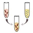 раздел «Философия химического взаимодействия»