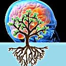 раздел «Философия сознания»